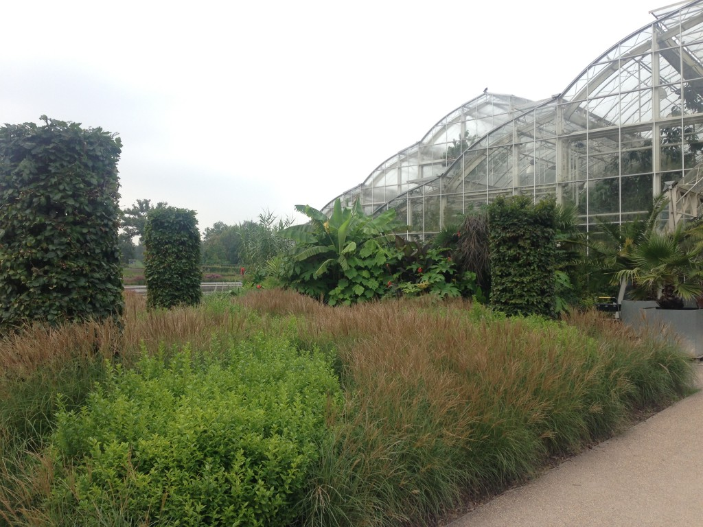 The main glass house surrounded by plantings. The view outside and glass house itself is stunning.
