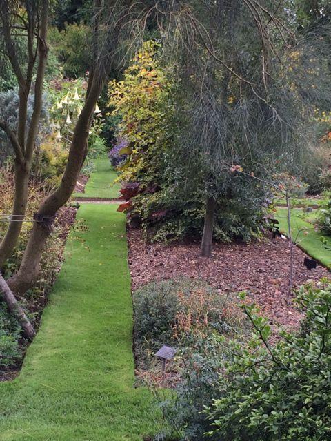 Chelsea Physic Garden Autumn / October 2014
