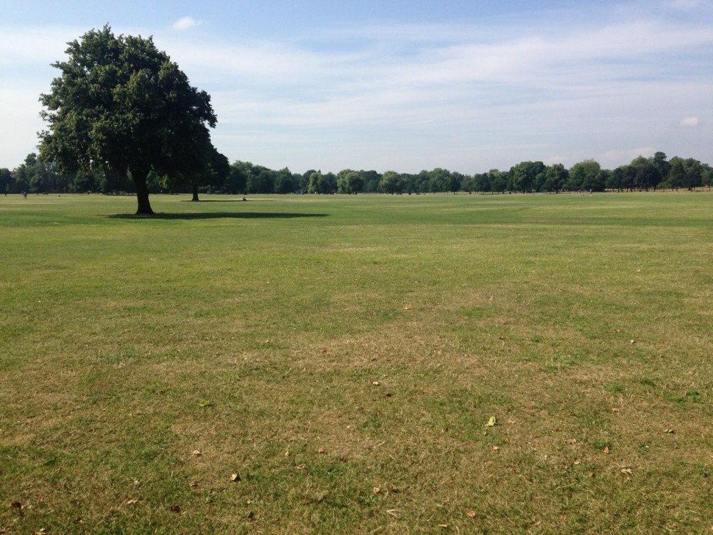 Clapham Common always looks beautiful