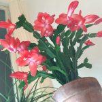 Littlebury 2014 Flower Power