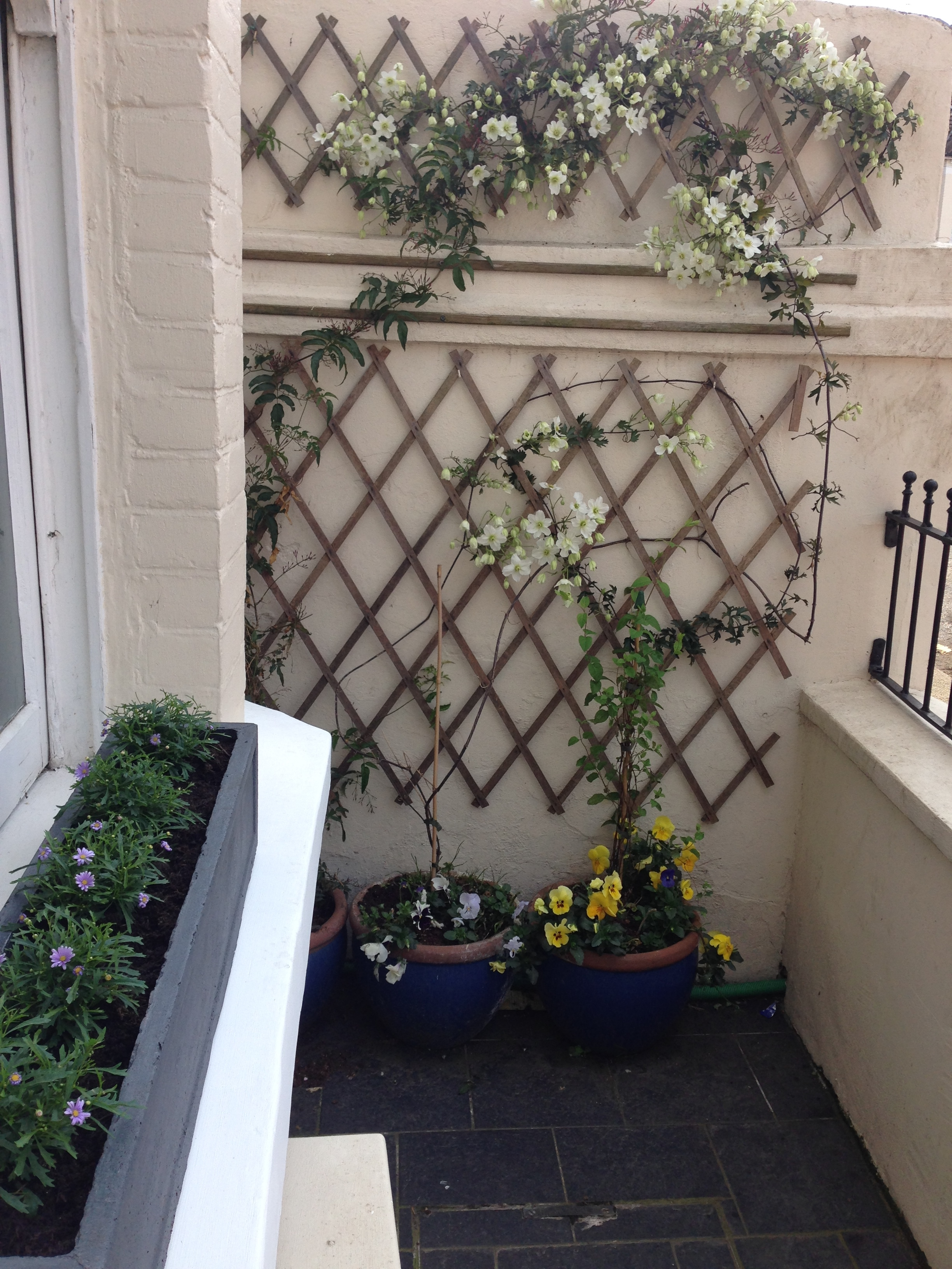 littlebury 2014 flower power jack wallington garden. Black Bedroom Furniture Sets. Home Design Ideas