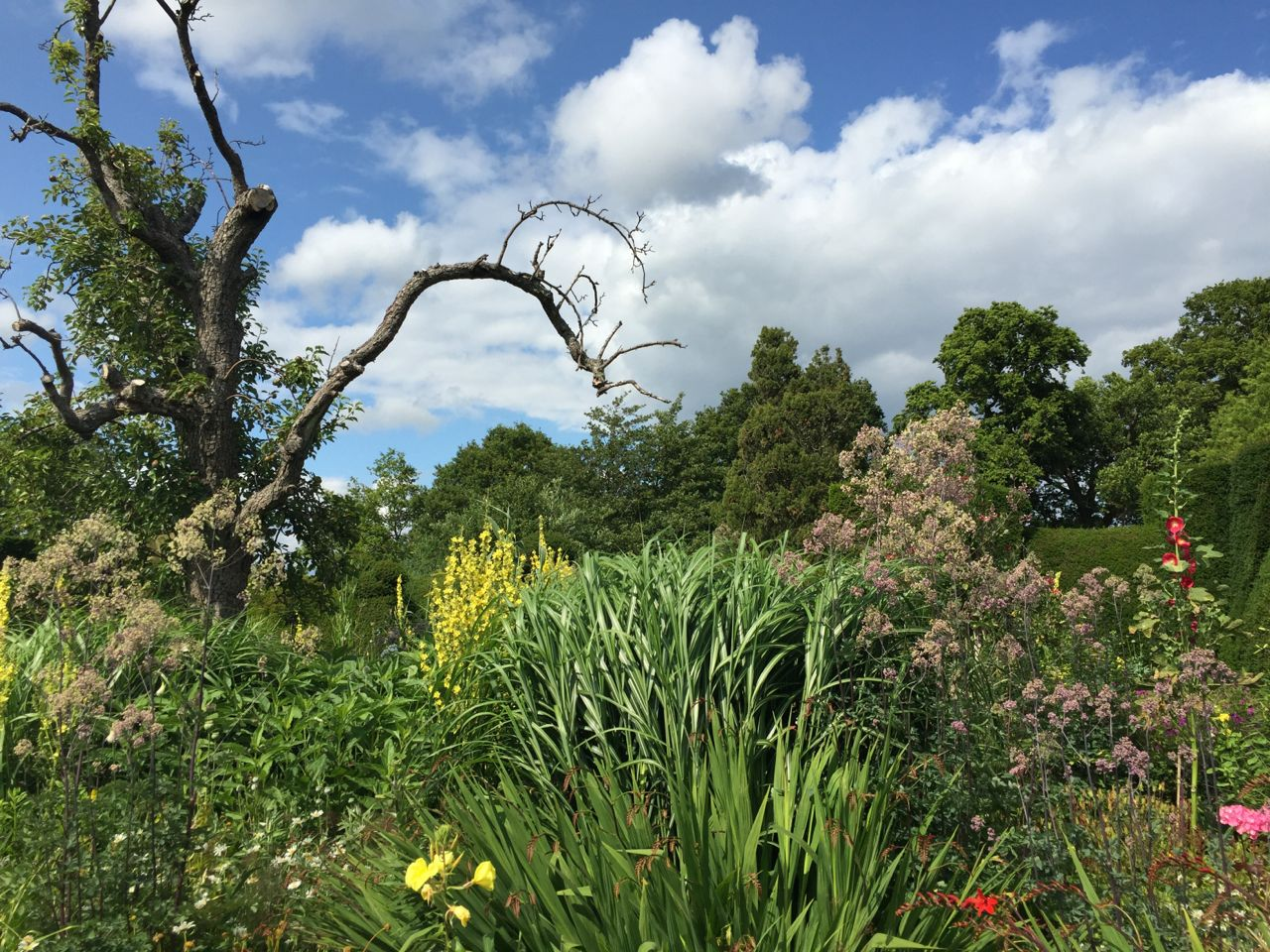 great-dixter-201538