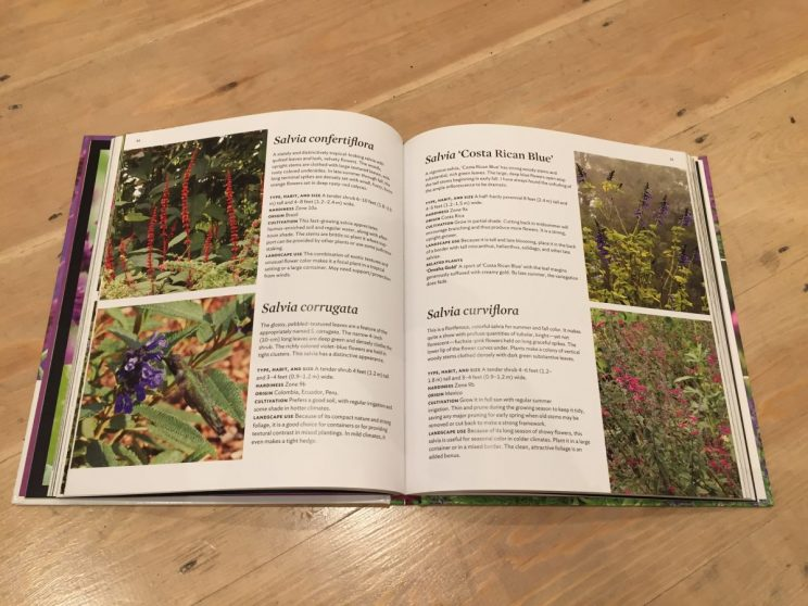 The bulk of the book is made up by a directory which lacks a useful structure and sadly, photography that doesn't make the plants jump out at you.