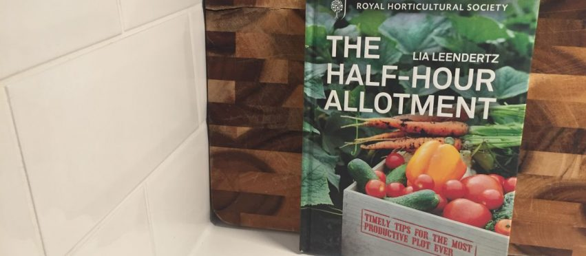 Review: RHS The Half-Hour Allotment by Lia Leendertz