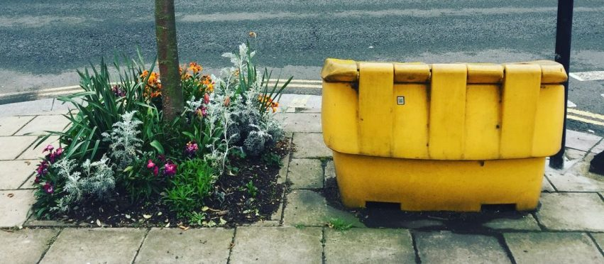 11 Realities of Gardening in London