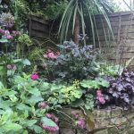 Form factor – our garden in June 2016
