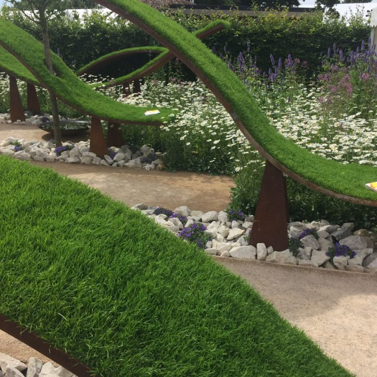 RHS Hampton Court Palace Flower Show 2016