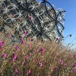 Library of Birmingham's rooftop secret garden and futuristic municipal design