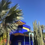 Marrakesh (Part Four): Jardin Majorelle