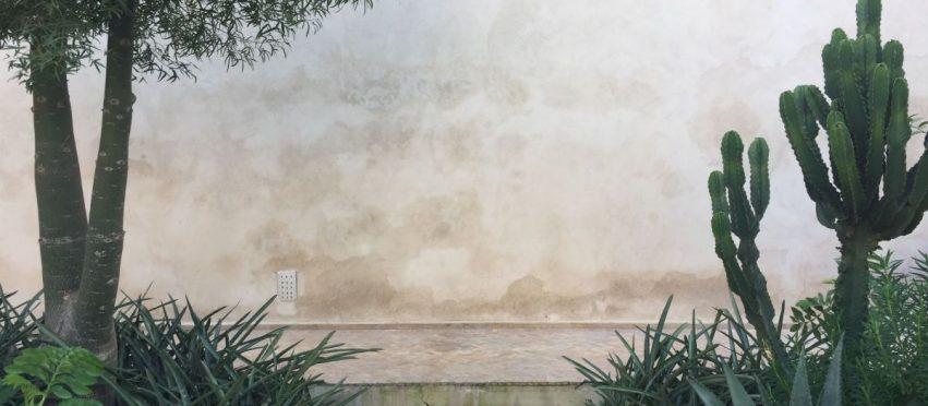 Marrakesh (Part Five): Le Jardin Secret by Tom Stuart-Smith