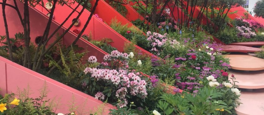 RHS Chelsea Flower Show 2017 – Press Day Highlights