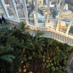 Sky Garden at the Walkie Talkie, London