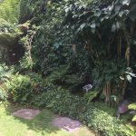 NGS 2015 – one of the greatest things to hit British summertime