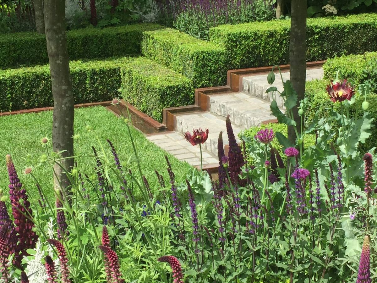 Rhs Chelsea Flower Show 2016 Jack Wallington Garden