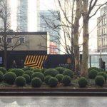 30 unreal photos of London garden design in the dead season
