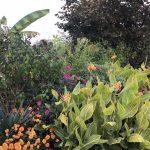 10 moments of exotic garden genius in Kent