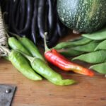 How to grow organic chilli peppers for the unadventurous palate