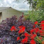 Midgley Open Gardens, near Hebden Bridge